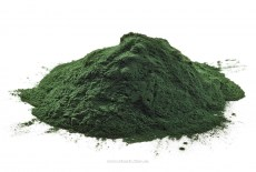 100-pure-chlorella-powder-organic